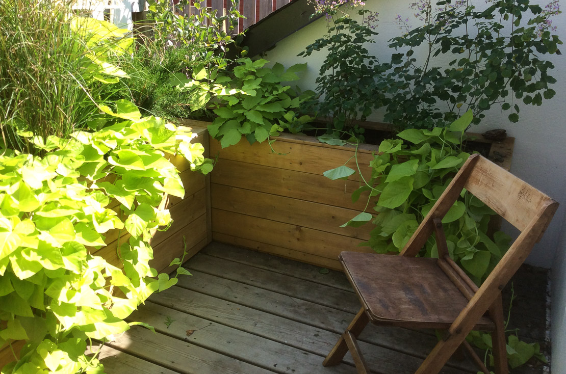 Urban garden maintenance services for private owners and businesses ...